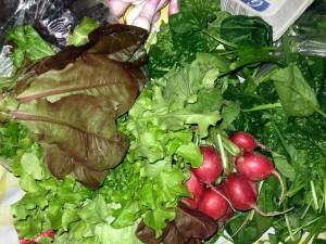 vegetables, local produce, farm fresh,