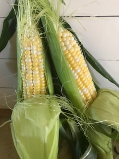 Lock Farm's bi-color sweet corn